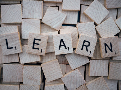 """Das Wort """"LEARN"""" auf Holzblöcken geschrieben"""